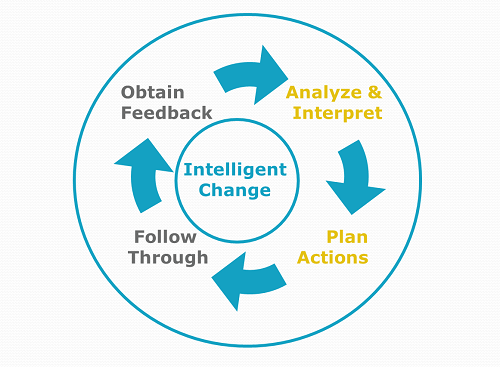 Gap Analysis & Action Planning