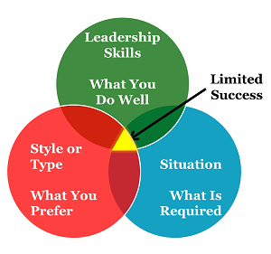 Limits of Leader Style & Type