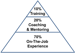 Training, Coaching and Experience 2